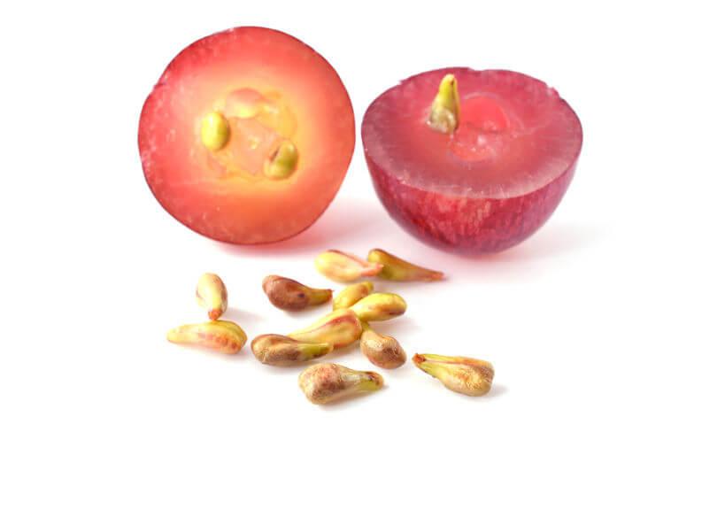 22906964 - grape seeds closeup