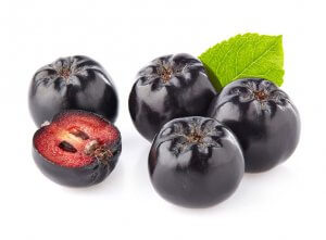 aronia berries | Gundry MD