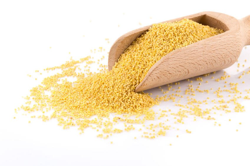 approved grains | gundryMD