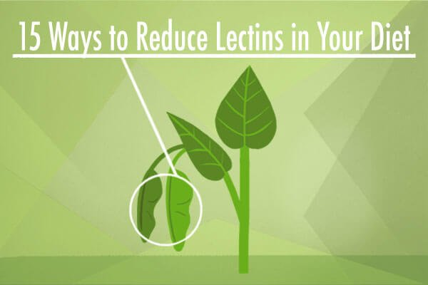 15 Ways to Reduce Lectins in Your Diet