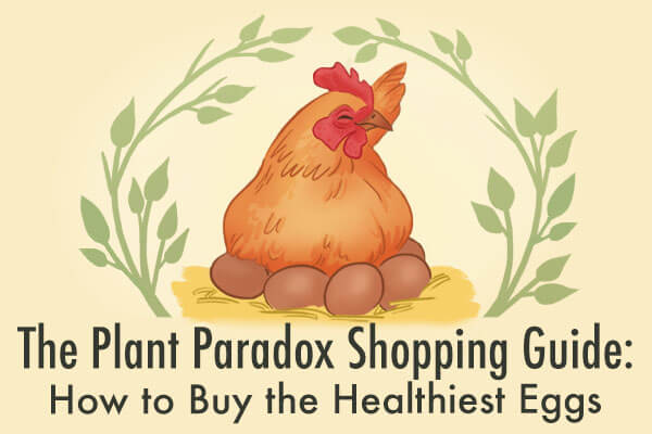 egg carton labels | Gundry MD