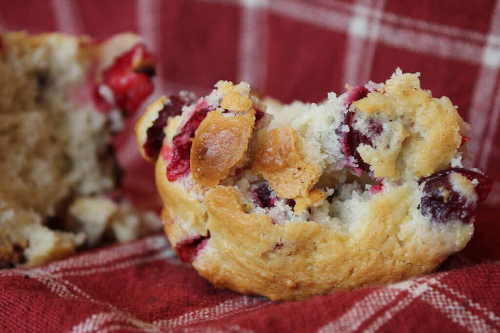 lectin free muffin
