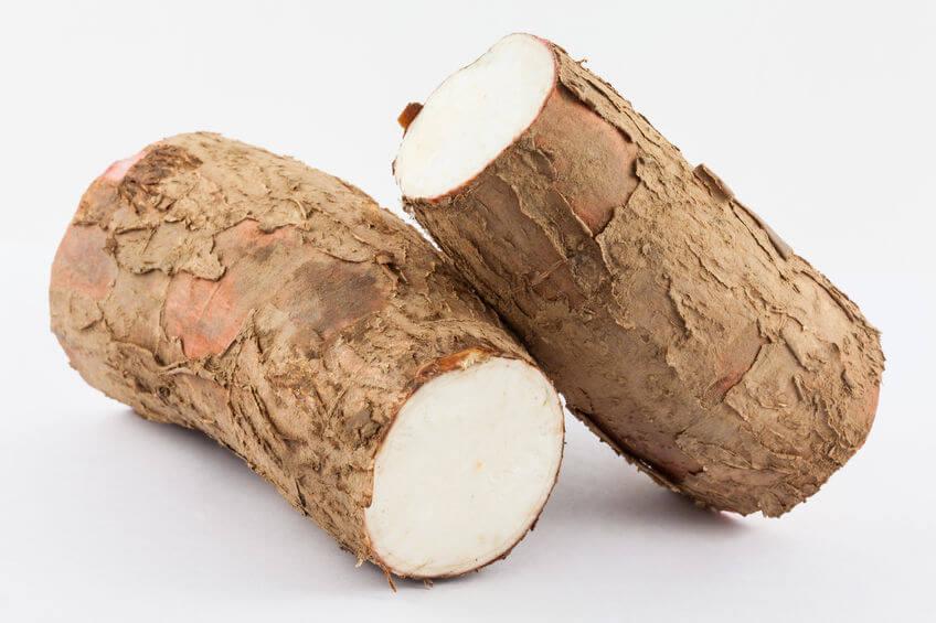 Cassava Waffles | GundryMD