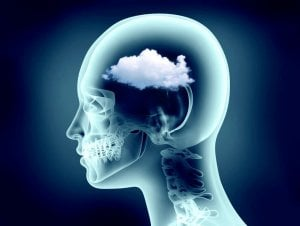 brain fog | Gundry MD
