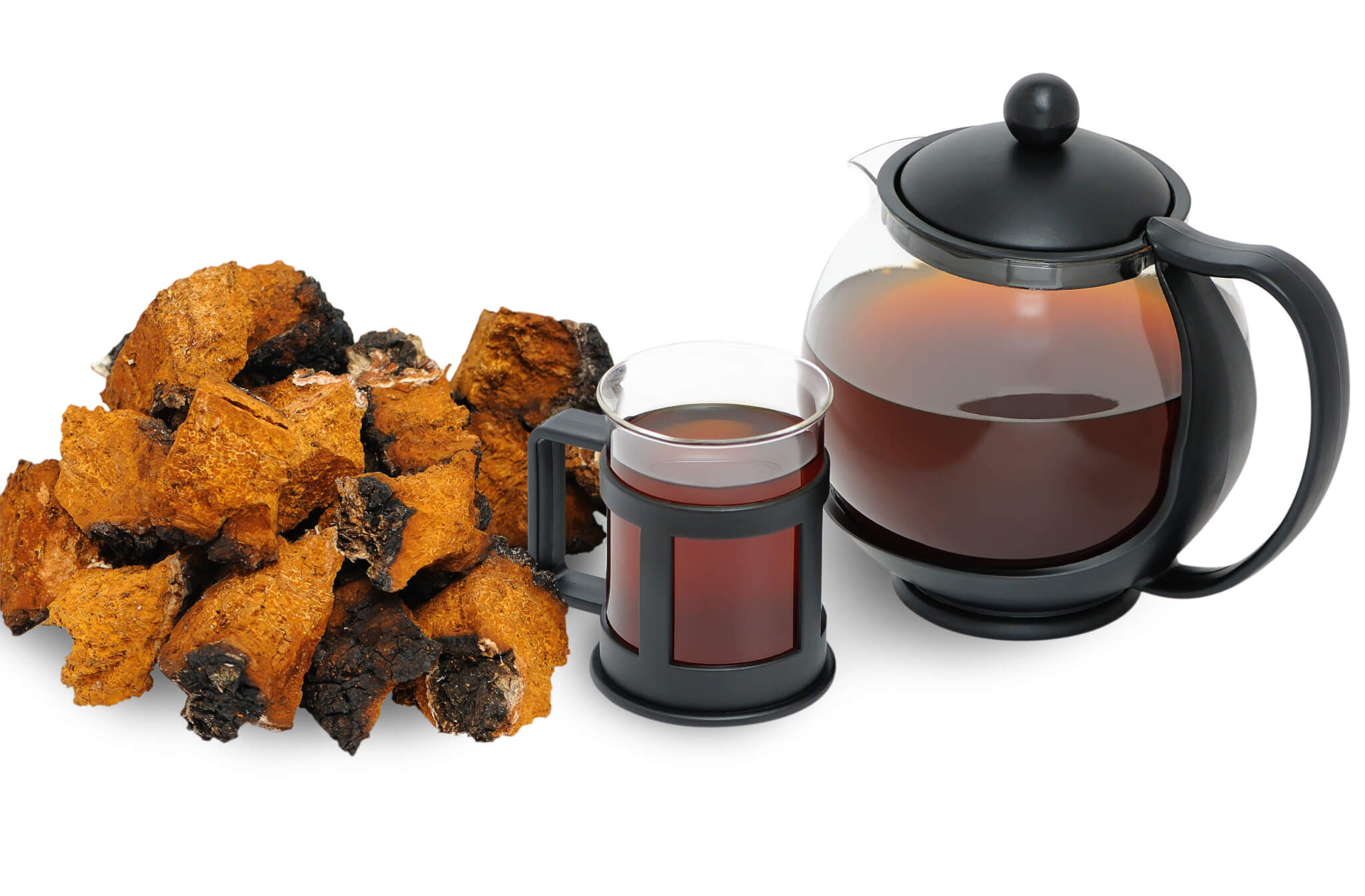 Chaga Mushroom – Benefits That You Must Know