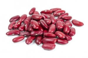 lectin-free foods | Gundry MD
