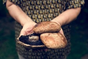 portobello mushrooms | Gundry MD