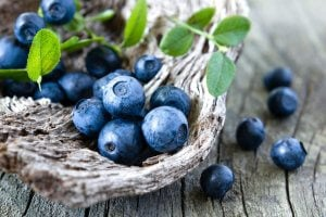 blueberries | Gundry MD