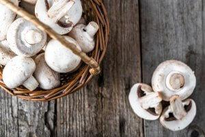 mushrooms | Gundry MD