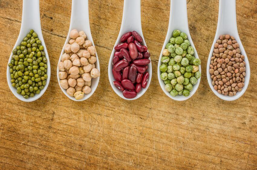 dietary lectins legumes | Gundry MD