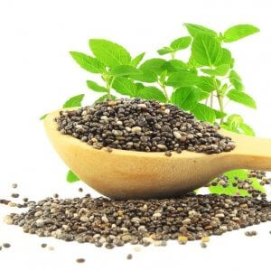 grow chia seeds | Gundry MD