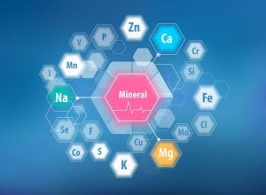 minerals | Gundry MD