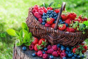 berries | Gundry MD