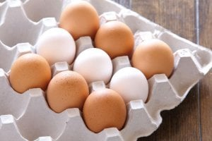 types of eggs | Gundry MD