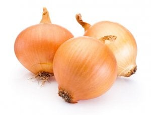 onions | Gundry MD