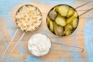 prebiotics vs probiotics | Gundry MD